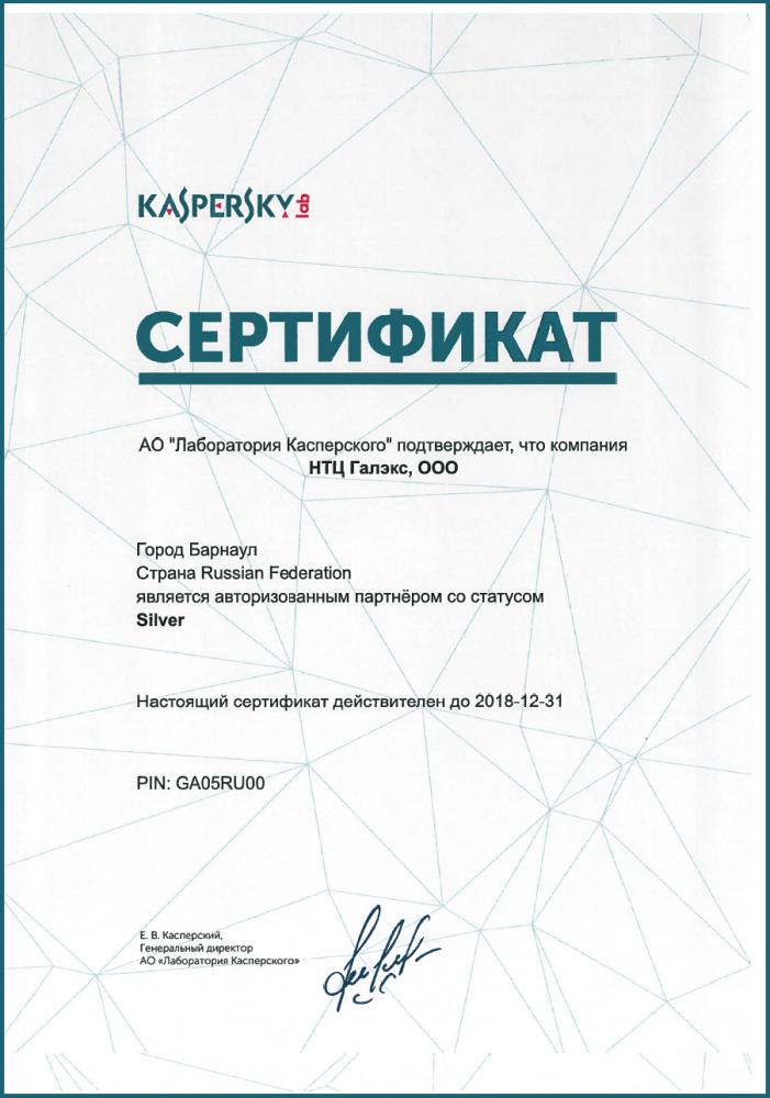 Silver Partner Лаборатория Касперского.png